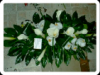 funeral_pic2